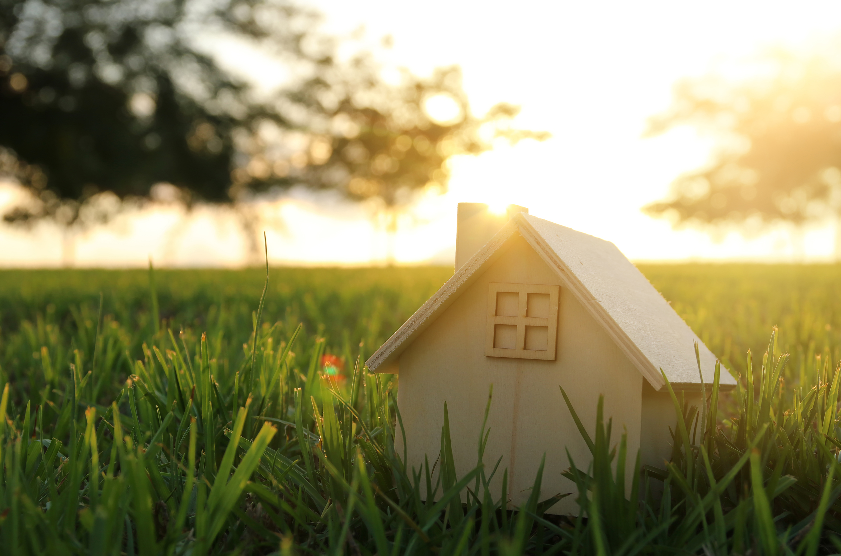 Easy ways to care for your home this summer